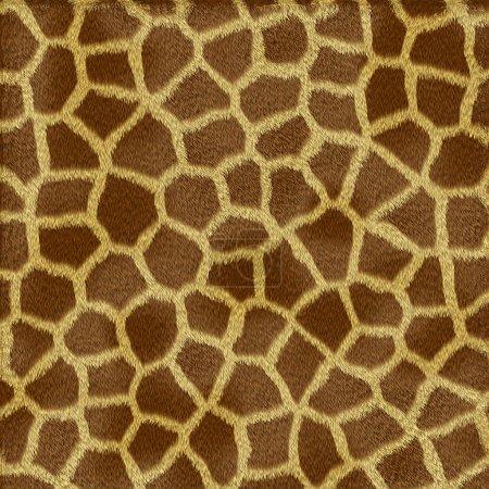 Giraffe fur texture
