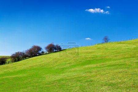 Photo for Grassy green hill with a beautiful clear blue sky - Royalty Free Image