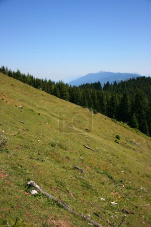 Alpine slope