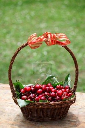 Cherry fruit in basket