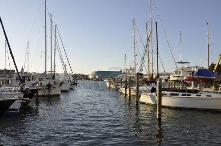 Photo for Boats docked in the Chesapeake Bay harbor in Annapolis, Maryland - Royalty Free Image