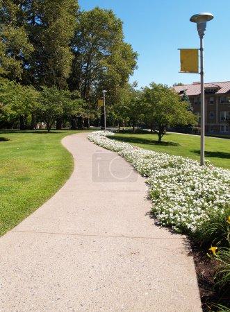 Photo pour Curving trottoir sur un campus universitaire avec des fleurs - image libre de droit
