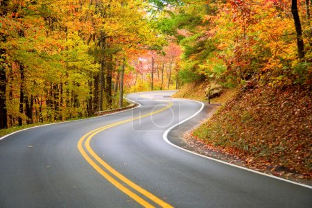 Photo for Winding road through fall forest in Appalachian Mountains - Royalty Free Image