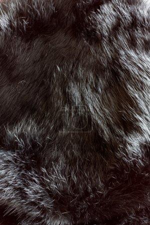 Photo pour Texture de fourrure se bouchent - image libre de droit