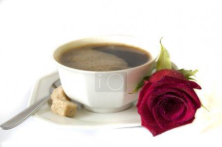 Good morning, my love