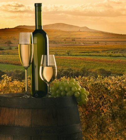 Photo for Still-life with white wine, cluster and barrel on background on vineyard - Royalty Free Image