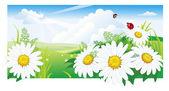 """Постер, картина, фотообои """"Летний пейзаж с ромашкой"""""""