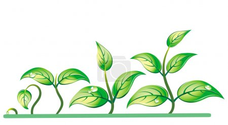 Illustration for Progression of seedling growth - Royalty Free Image