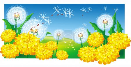 Illustration for Meadow with dandelions - Royalty Free Image