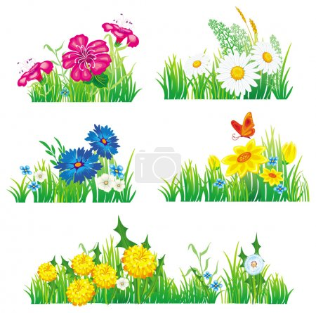 Illustration for Flowers and grass - Royalty Free Image