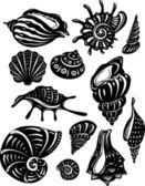 Set of decorative shell