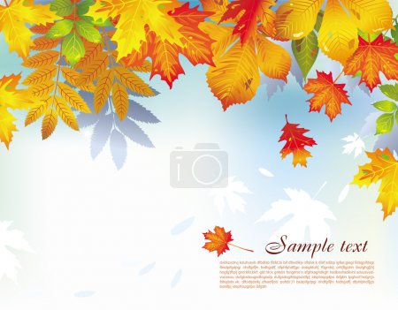 Illustration for Colorful background from autumn leaves - Royalty Free Image