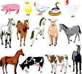 Vector Illustration of 14 Farm Animals birds and mammals