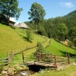 Landscape of Carpathians...
