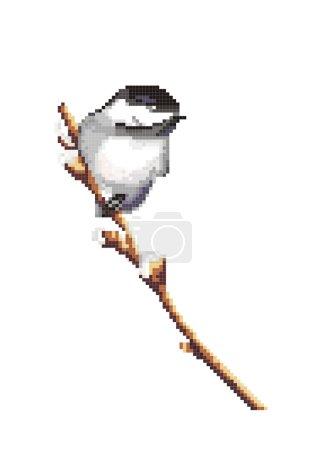 Illustration pour Oiseau sur une branche sur le fond blanc, vecteur - image libre de droit