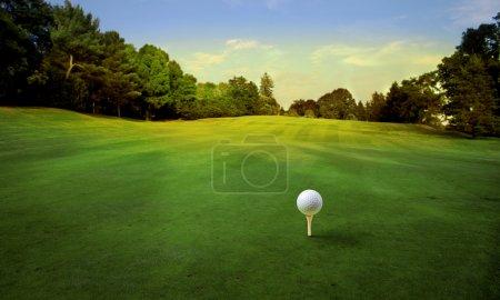 Photo pour Balle de golf au bon endroit pour être jeté - image libre de droit