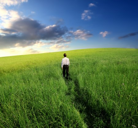 Photo for Businessman looking at the sun and walking in a green field - Royalty Free Image