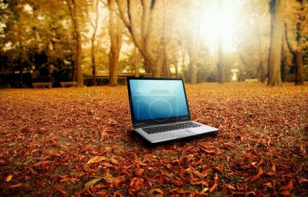Photo pour Ordinateur portable dans le paysage d'automne - image libre de droit