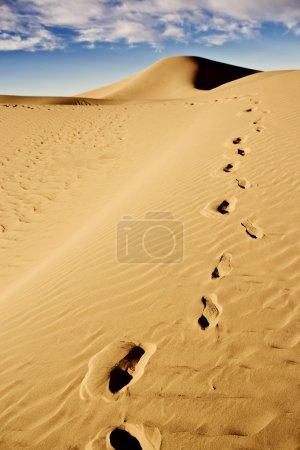 Footprints on desert sand dune
