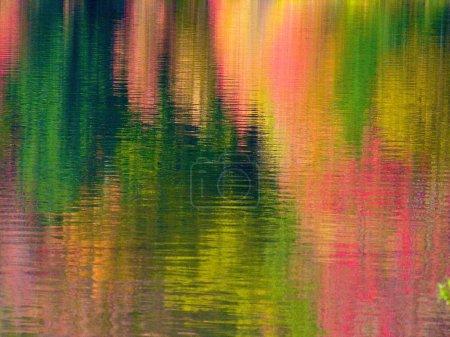 Photo pour Couleurs d'automne reflétées dans l'eau à Allegheny State Park près de Salamanca, New York . - image libre de droit