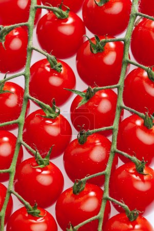 Photo for Still life of tomatoes - Royalty Free Image
