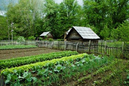 Photo pour Potager avec cabanes à oiseaux de gourde. Parc national Smoky Mountain - image libre de droit