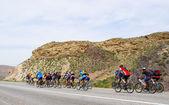 Mountain bikers group on road in desert
