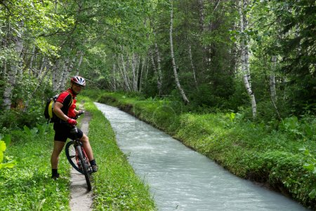 Mountain biker, small river and birch forest