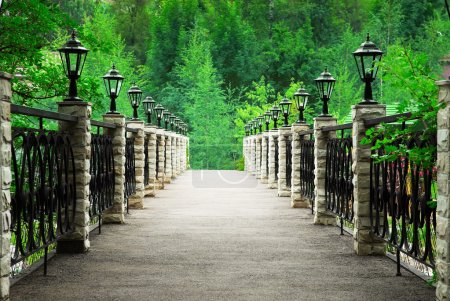 Photo pour Passerelle dans le parc - image libre de droit