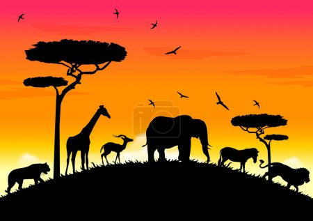 Illustration pour Coucher de soleil africain sur la colline avec tigre, lion, girafe, antilope, éléphant et zèbre - image libre de droit