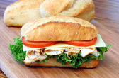 Fresh and delicious sub sandwich.