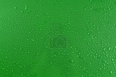 Water drops on green