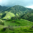Cocora Valley, one of the most beautiful landscape of Quindio, which is nestled between the mountains of the Cordillera Central in Colombia.