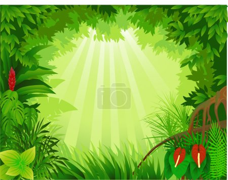 Photo for Vector illustration of tropical forest - Royalty Free Image