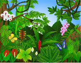 Beautiful tropical forest